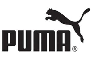 https://www.amigo.nl/wp-content/uploads/2021/02/Puma.jpg